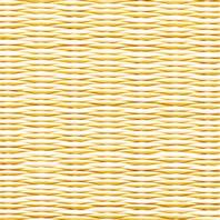 黄金色×乳白色